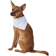 Lucy & Co. Dog & Cat Bandana, Small, The Leo