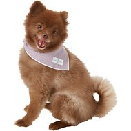 Lucy & Co. Dog Bandana, Small, The Duke