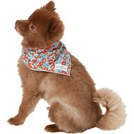 Lucy & Co. Dog & Cat Bandana, Small, The Chole