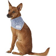 Lucy & Co. Dog & Cat Bandana, Small, The Hoku