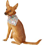 Lucy & Co. Dog Bandana, Small, The Penny