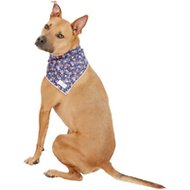 Lucy & Co. Dog & Cat Bandana, Large, The Mika