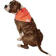 Lucy & Co. Dog Bandana, Large, The Jasper
