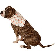 Lucy & Co. Dog Bandana, Large, The Britney