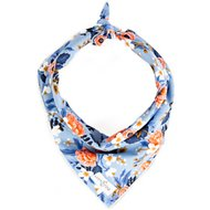 Lucy & Co. Dog Bandana, Large, The Molly
