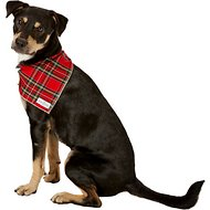 Lucy & Co. Dog & Cat Bandana, Large, The Dagger