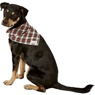 Lucy & Co. Dog & Cat Bandana, Large, The Parker