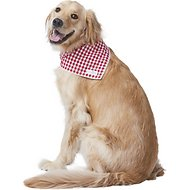 Lucy & Co. Dog & Cat Bandana, Large, The Kennedy