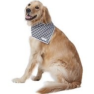 Lucy & Co. Dog & Cat Bandana, Large, The Bandit