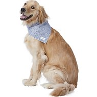 Lucy & Co. Dog & Cat Bandana, Large, The Hoku