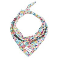 Lucy & Co. Dog Bandana, Large, The Penny