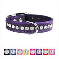 OmniPet Signature Leather Crystal Dog Collar, Purple, 16-in