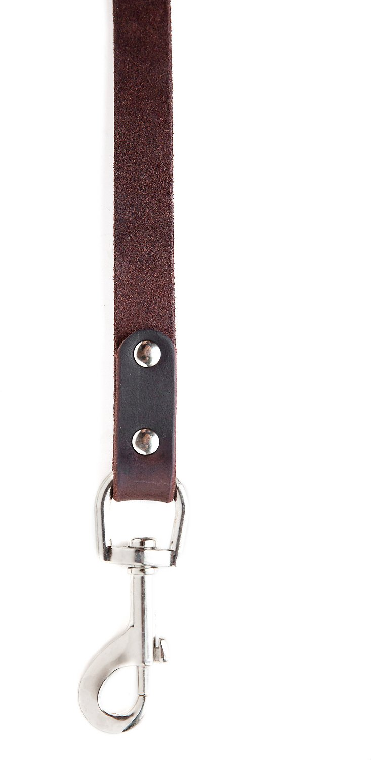 Watch Mighty Paw Leather Dog Leash, Light Brown, Standard video