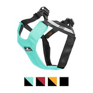 Sleepypod Clickit Sport Dog Safety Harness, Robin Egg Blue, Medium