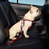 HDP Car Dog Harness & Safety Seat Belt Travel Gear, Red, Small