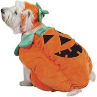 Zack & Zoey Pumpkin Pooch Dog Costume, X-Small