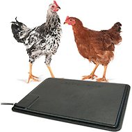 K&H Pet Products Thermo-Chicken Heated Pad, Black