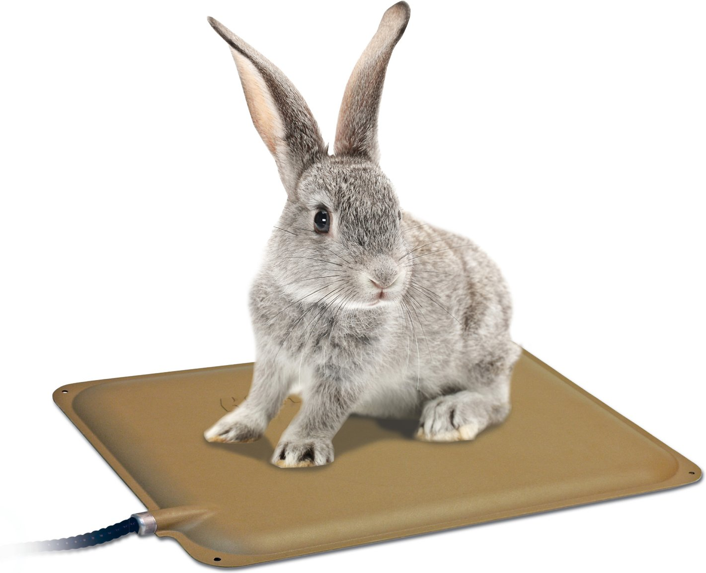 K Amp H Pet Products Outdoor Heated Small Animal Pad Tan