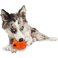 PetSafe Sportsmen Barnacle Dog Toy, Medium