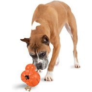 PetSafe Sportsmen Barnacle Dog Toy, Large