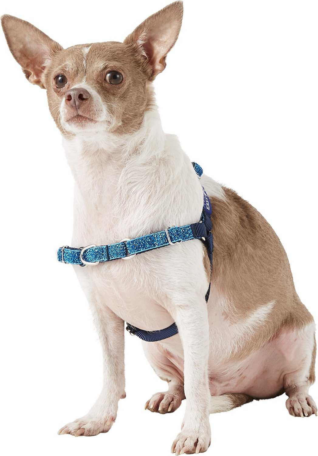 easy walk dog harness instructions