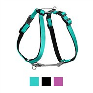 PetSafe 3 in 1 Dog Harness, Teal, Large