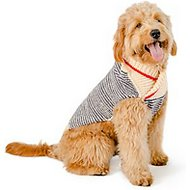 Chilly Dog Spencer Dog & Cat Sweater, XX-Large
