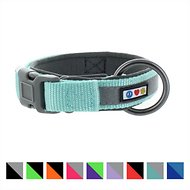 Pawtitas Soft Adjustable Reflective Padded Dog Collar, Teal, Medium/Large