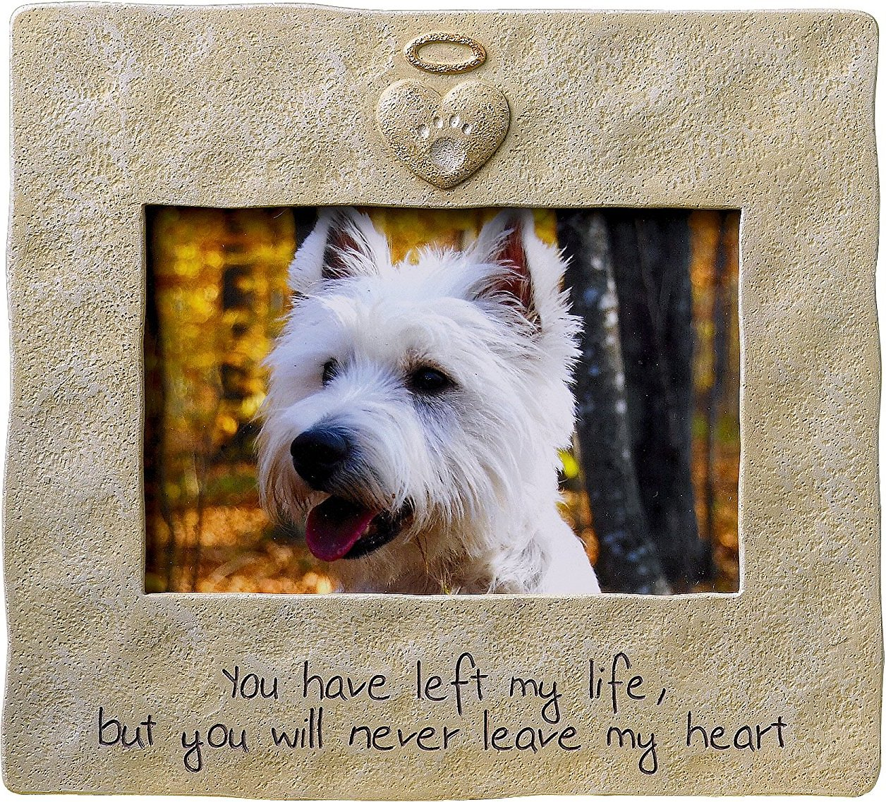 Grasslands Road Dog & Cat Memorial Picture Frame, 4 x 6 - Chewy.com