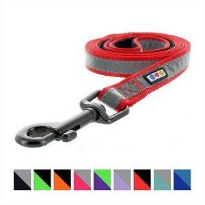 Pawtitas Nylon Reflective Padded Dog Leash