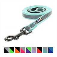 Pawtitas Reflective Padded Dog Leash, Teal, 6-ft, Medium/Large