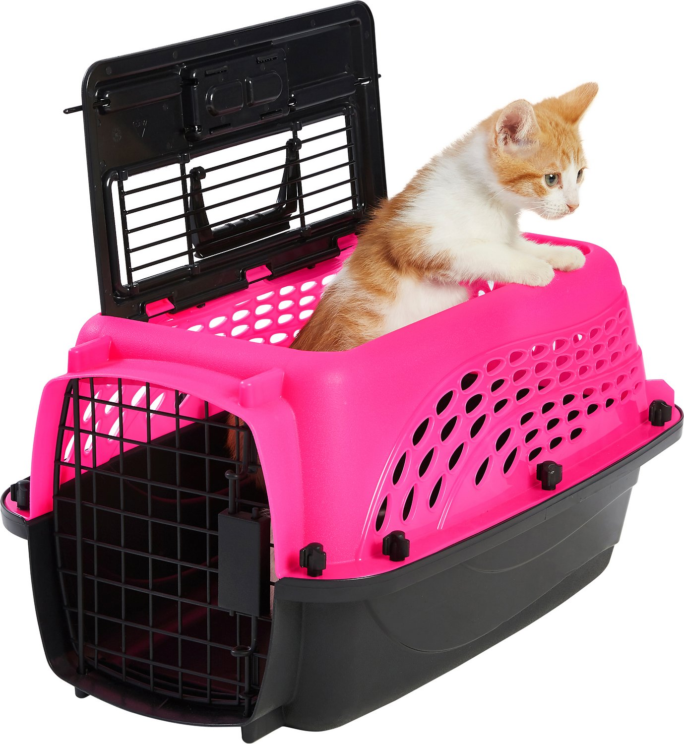 3ae6980e1fd Frisco Two Door Top Load Plastic Kennel, Pink, 19-in - Chewy.com