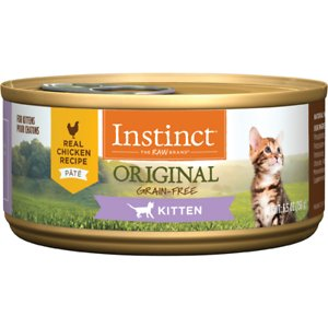 Best Kitten Food 2019 Wet Canned Dry Reviews Guides