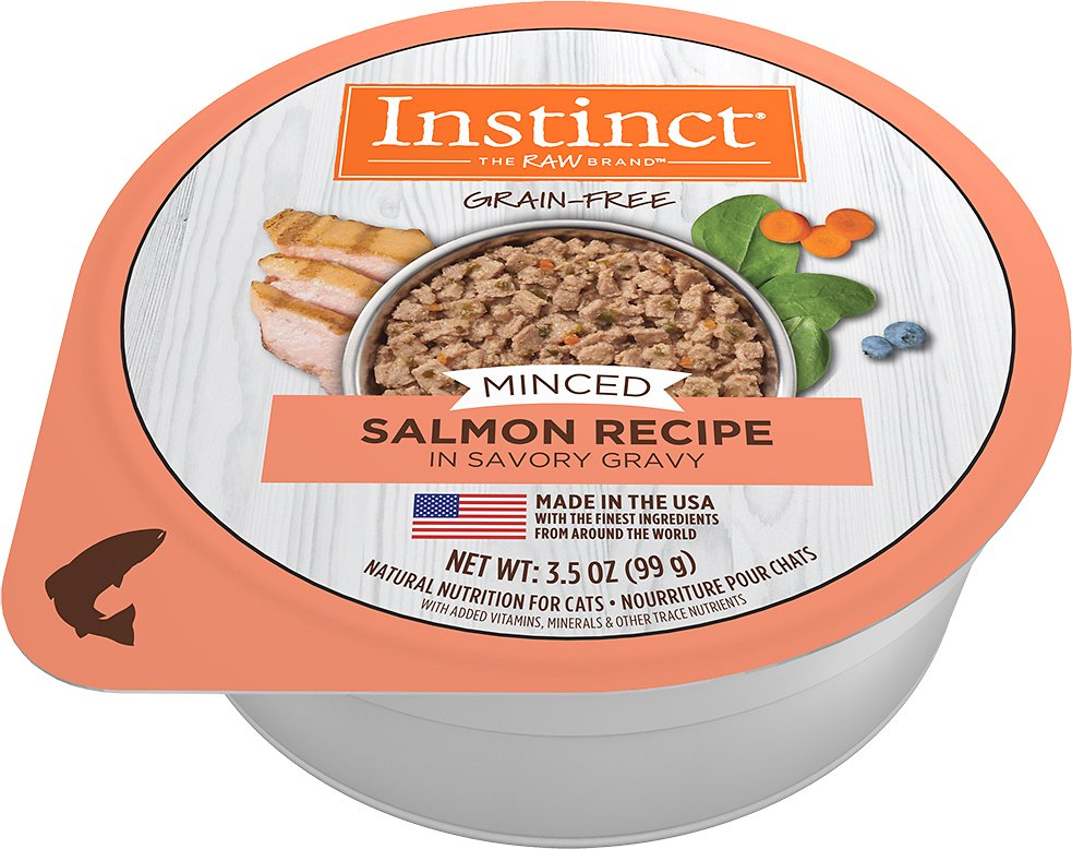 Recipe With Real Salmon Wet Cat Food