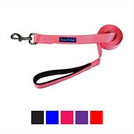 Downtown Pet Supply Dog Leash, Pink, 2-ft, 3/4 in
