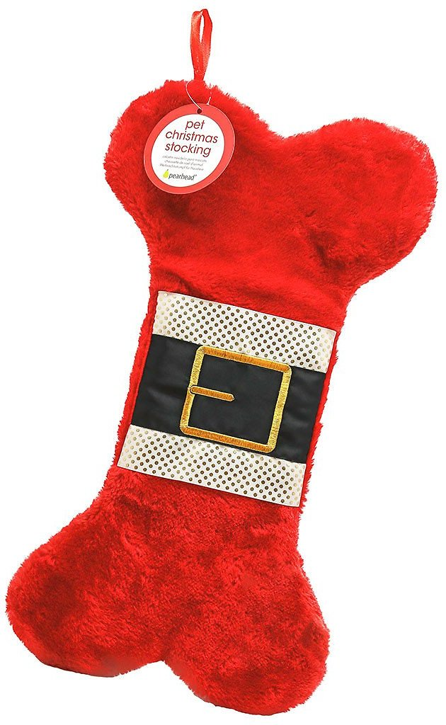 Pearhead Dog & Cat Christmas Stocking, Red - Chewy.com