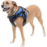 HandicappedPets Front Lift Combo Dog Harness, Small