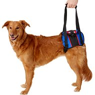HandicappedPets Rear Lift Combo Dog Harness, Large