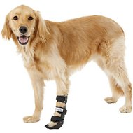 HandicappedPets Front Leg Dog & Cat Splint, Large
