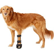 HandicappedPets Front Leg Dog & Cat Splint, X-Large