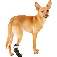 HandicappedPets Rear Leg Dog & Cat Splint, XX-Small
