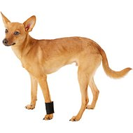 HandicappedPets Dog Wrist Wrap, Small