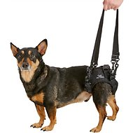 HandicappedPets Rear Lift Dog Harness, Small