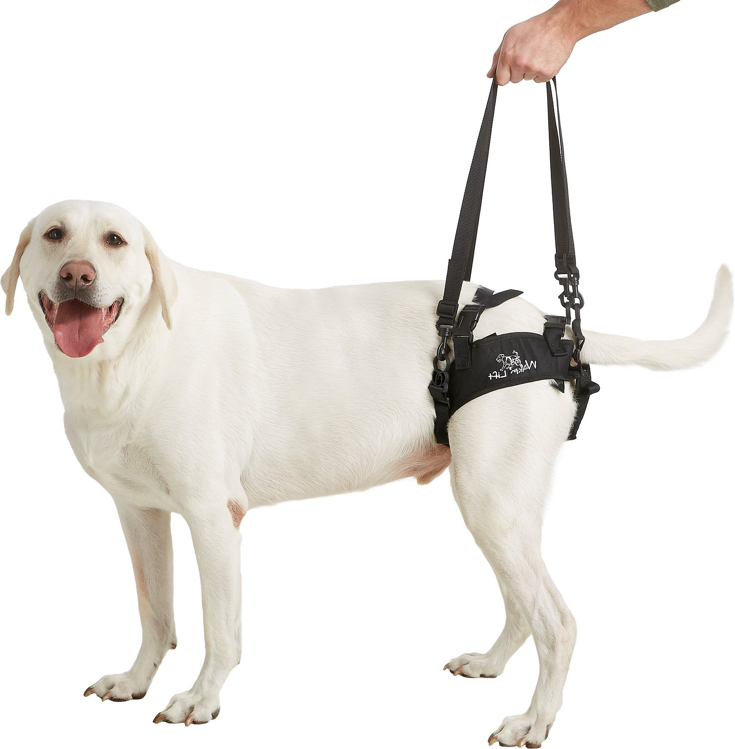 Handicappedpets Rear Lift Dog Harness Large Chewy Com