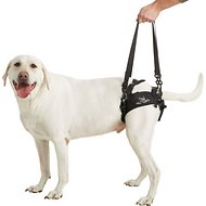 HandicappedPets Rear Lift Dog Harness, Large