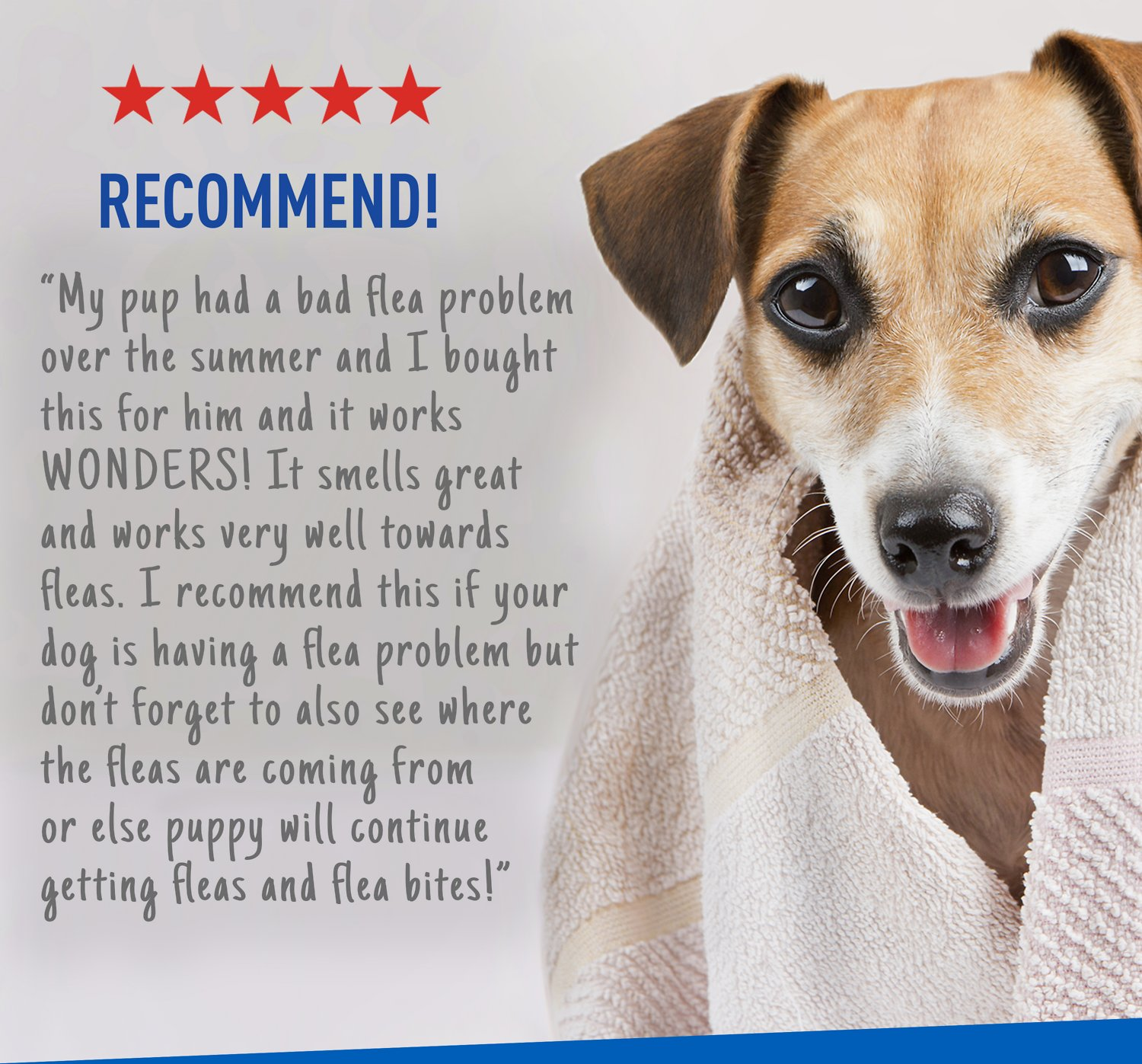 How To Wash Cat With Adams Flea And Tick Shampoo
