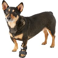 HandicappedPets Bootie Style Dog Leg Splint, Small