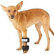 HandicappedPets Carpal Style Front Leg Dog Splint, X-Small