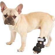 HandicappedPets Hock Style Rear Leg Dog Splint, X-Small