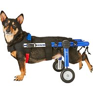 "HandicappedPets Medium Dog Wheelchair, Blue, 26-50 lbs, 8-9"" leg"